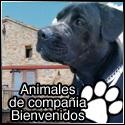 Banner Animales Bienvenidos
