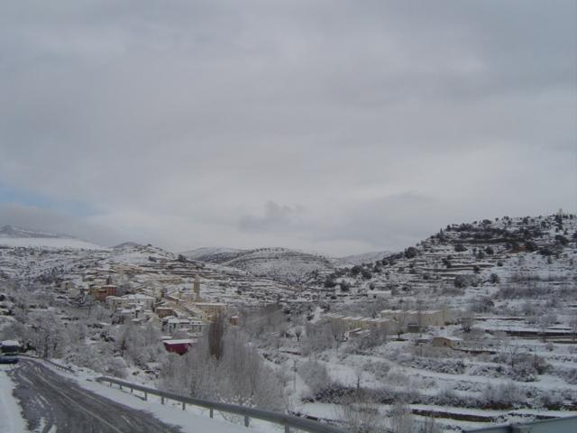 Nevada Cortes 2013